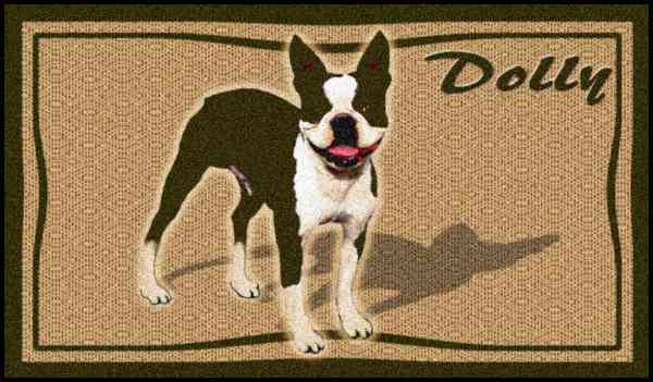 Animal_5512fff91daf2Boston Terriers - 3x5 -51330095235632.jpg